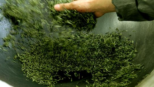 【都匀毛尖茶百科】都匀毛尖茶的手工制作方法